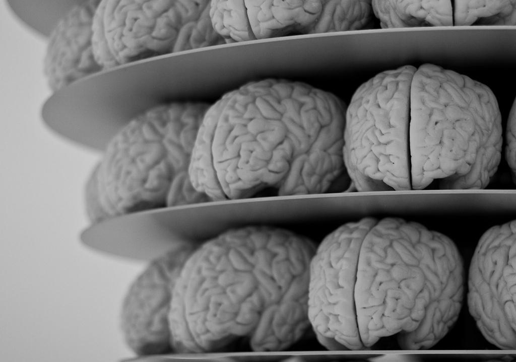 Imagem do post com o título: As 12 regras do cérebro aplicadas ao desenvolvimento de Software - Vídeo